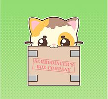 Box Cat by pai-thagoras