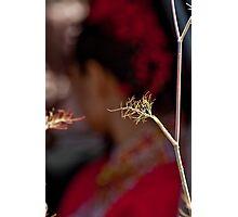 Tea Ceremony Photographic Print