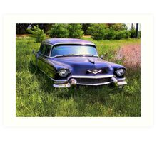 LIMO IN SPRING Art Print