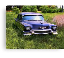 LIMO IN SPRING Canvas Print