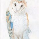Ben´s Barn Owl for Tony by LadyE