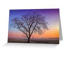 Make a wish upon a tree Greeting Card