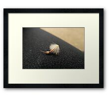 Brown & Black Texture & Tone Framed Print