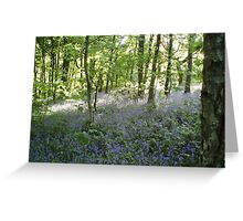 Tyle Coch Bluebells Greeting Card
