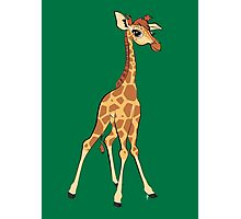 You're Having A Giraffe! Photographic Print