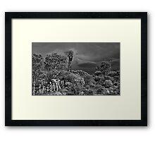 Stormy Outback Framed Print