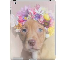 Flower Power, Rome iPad Case/Skin