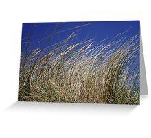 Perranporth Grass. Greeting Card
