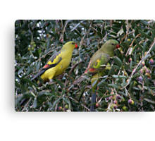 Regent Pair Canvas Print