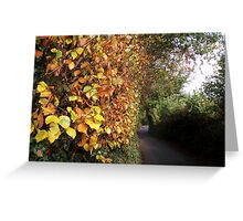 Golden Hedge Greeting Card