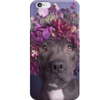 Flower Power, Aria iPhone Case/Skin