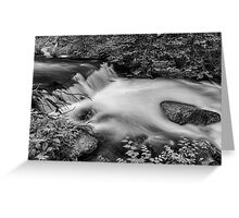 Mountain Stream Waterfall in Black and White Greeting Card