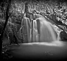 Lilydale Falls #2 by Elaine Short