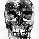 Black And White Skull by Sharon Cummings by Sharon Cummings