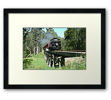 Charging across the bridge. Framed Print