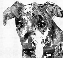 Black And White Great Dane Art Dog By Sharon Cummings by Sharon Cummings