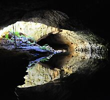 Tunnel Creek Reflections by Peter  Hughes