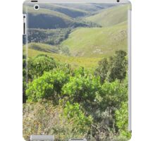 Nice view iPad Case/Skin