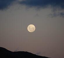 Dark Moon - Haarlem, South Africa by Nina du Preez