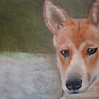 Dingo @ Fraser Island by Ryan-Byrne-Art