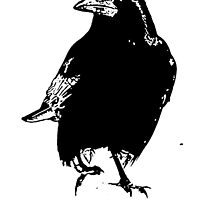 Raven by a1luha