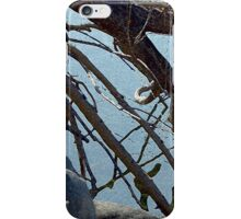 Softly Caressing The Limbs iPhone Case/Skin
