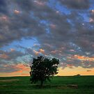 Nebraska Sky 3 by Tim Wright