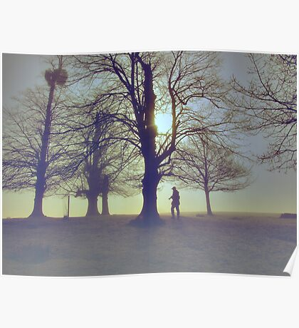 photography in the mist Poster