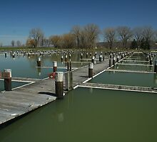 Dock Deep #2 by AlGrover