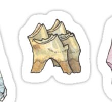 Witch Collection: Tooth and Stone Sticker