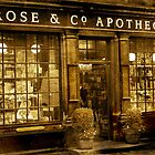 Apothecary by Catherine Hamilton-Veal  ©