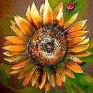 The Sunflower and The Ladybug by  Janis Zroback