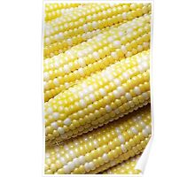 Cobs of Corn Poster
