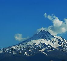 Mt Shasta by Howard Lorenz