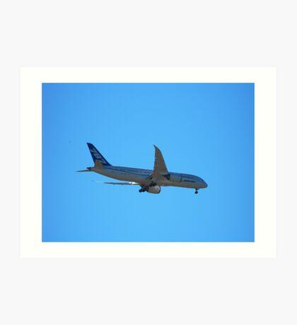Boeing 787 Dream Liner Art Print