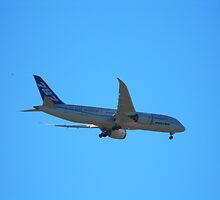 Boeing 787 Dream Liner by Howard Lorenz