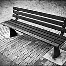 The Empty Bench by Maria  Gonzalez