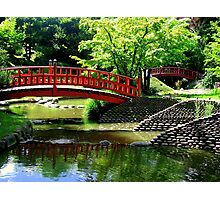 The Japanese Gardens at the Albert Kahn museum, Paris, France. Photographic Print