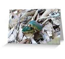 GREEN JUNE BEETLES MATING Greeting Card