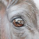 All in the eye-Listowel Fair by Pauline Sharp