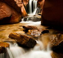 Kanarra Waterfall by Sam Scholes