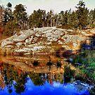 McGillivray Lake by Larry Trupp