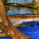 Sturgeon Falls by Larry Trupp