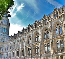 Natural History Museum Exterior by LeeMartinImages