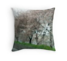Cherry Blossoms in Rain Along the River Road Throw Pillow