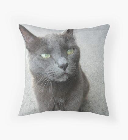 Cat-titude - cat with an attitude Throw Pillow