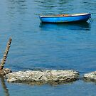 Boat, Cove, Brooklin, Maine by fauselr