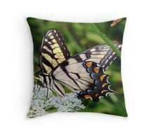 A male Eastern Tiger Swallowtail having lunch. Throw Pillow