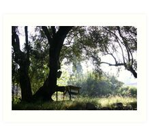 Table in the Forest Art Print