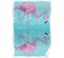 Flamingo Reflection Detection Poster